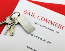 decouvrez lel projet de loi d aout 2013 sur le bail commercial