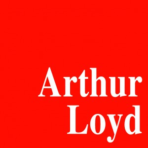 Local commercial a Jargeau avec arthur loyd